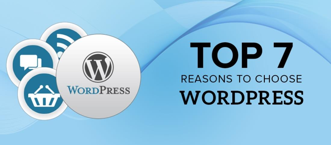 7 reasons as why you should choose WordPress for your new site :: Computers :: LGP Article Directory AL.LV