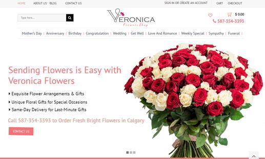 eCommerce Portfolio