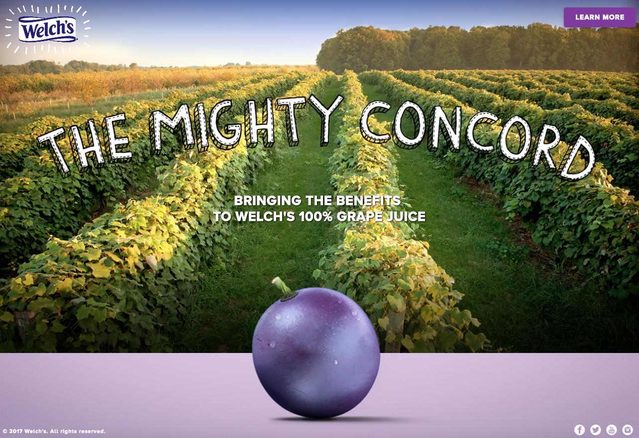 Welch's The Mighty Concord