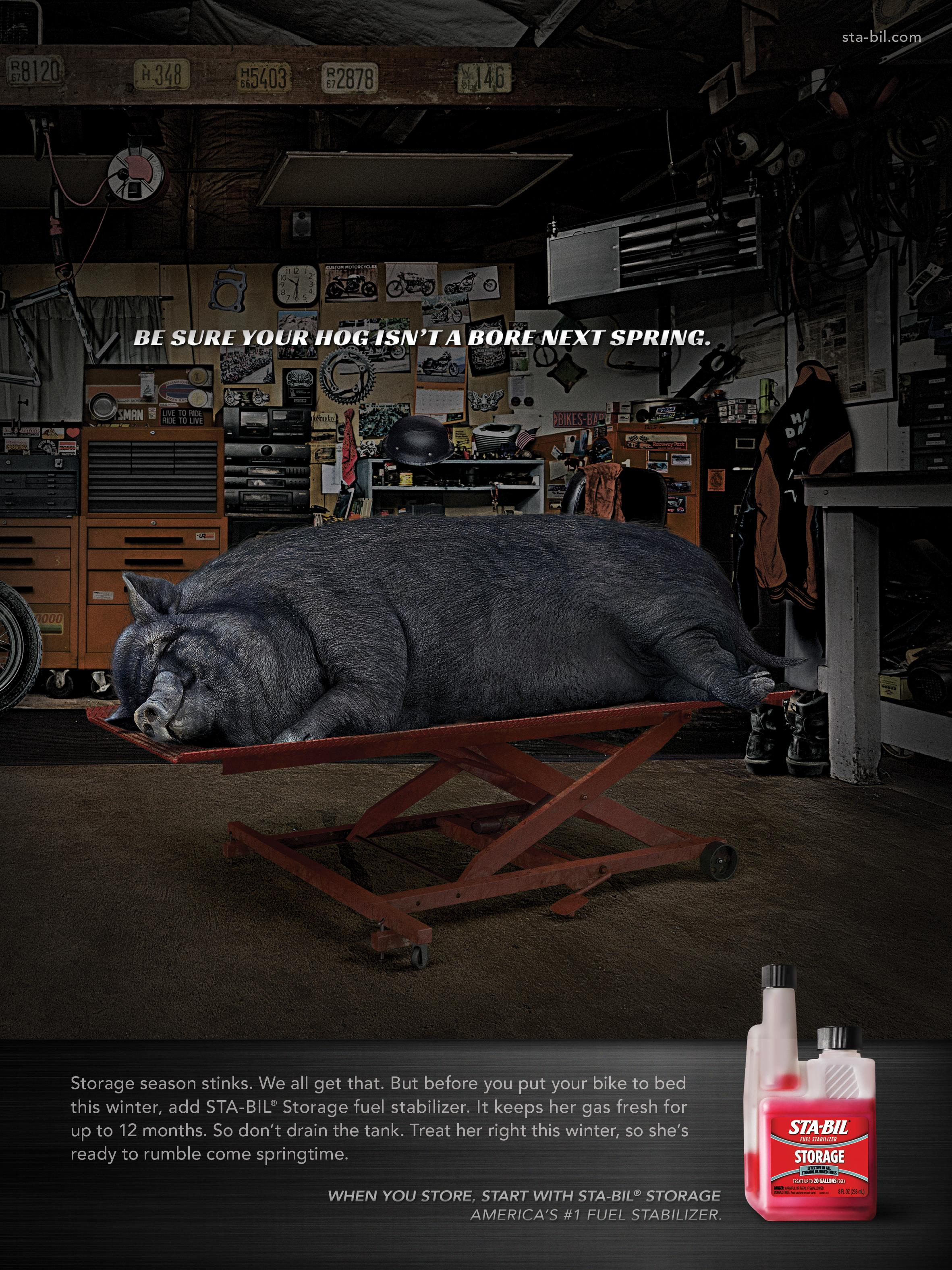 STA-BIL: Hibernation/Hog
