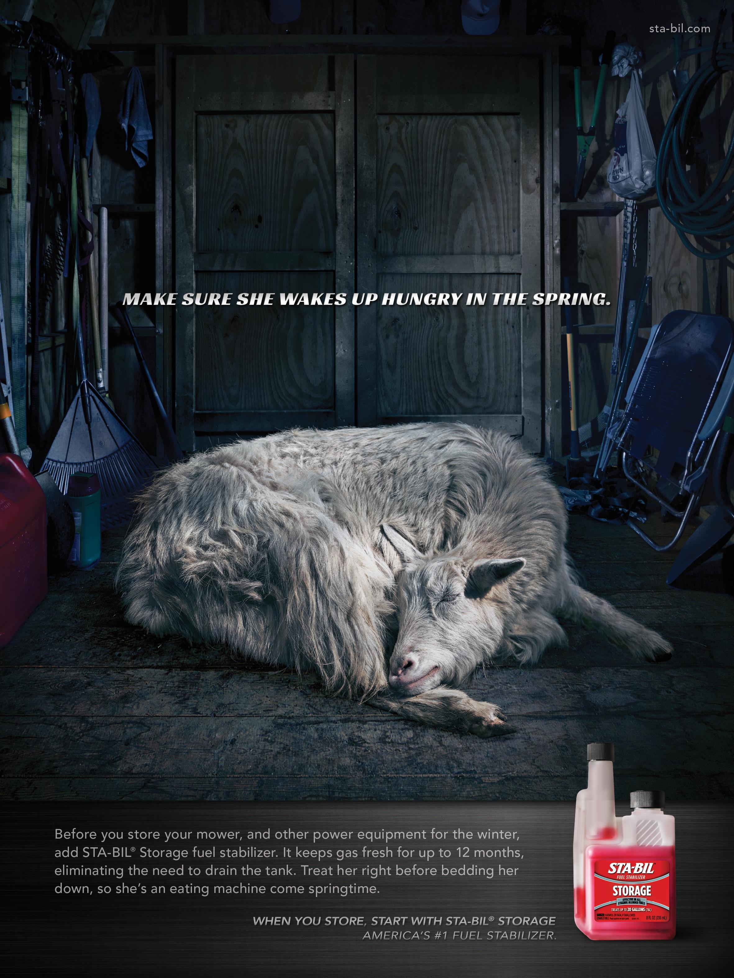 STA-BIL: Hibernation/Goat