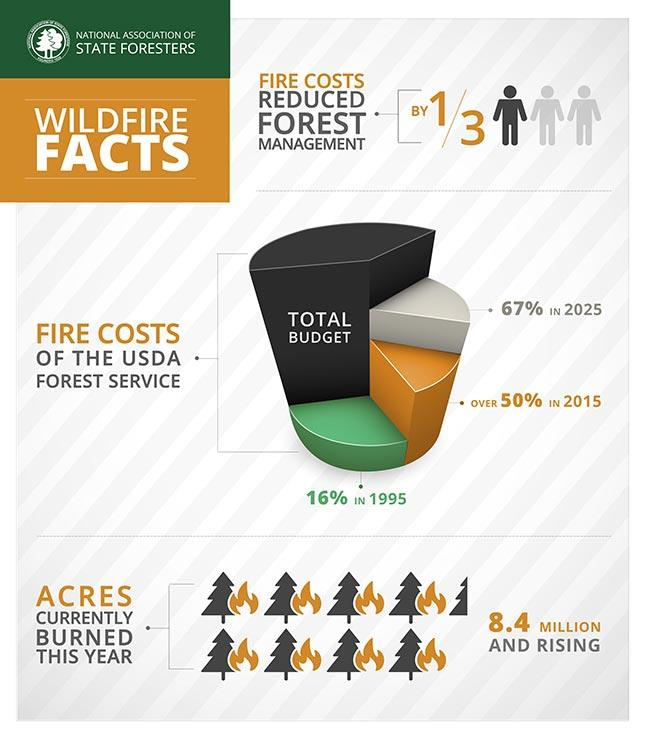 NASF Wildfire Infographic