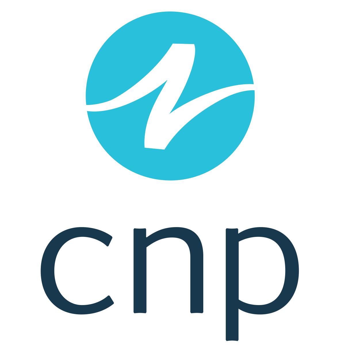 CNP - Clark/Nikdel/Powell, Inc.