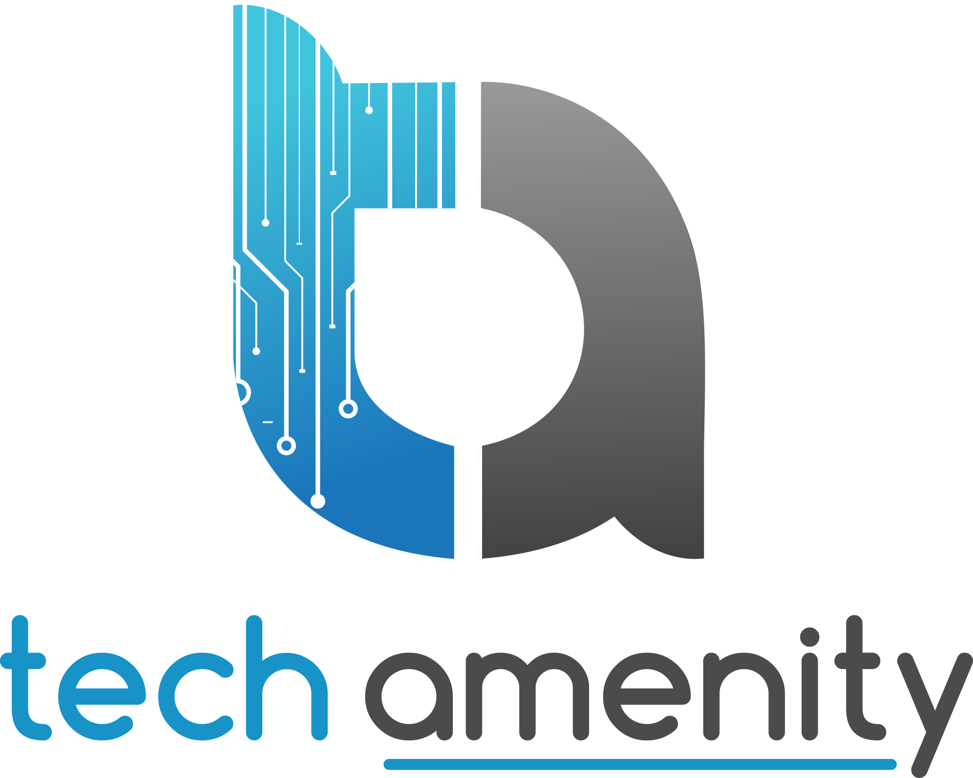 Techamenity - Digital Marketing Company